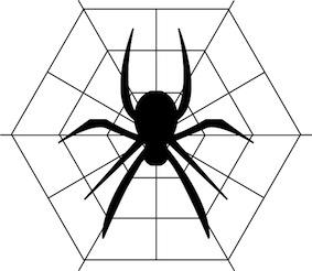 無料 夢占い 蜘蛛 くも