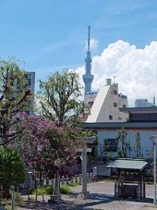東京都墨田区の人気パワースポット こんにゃく稲荷